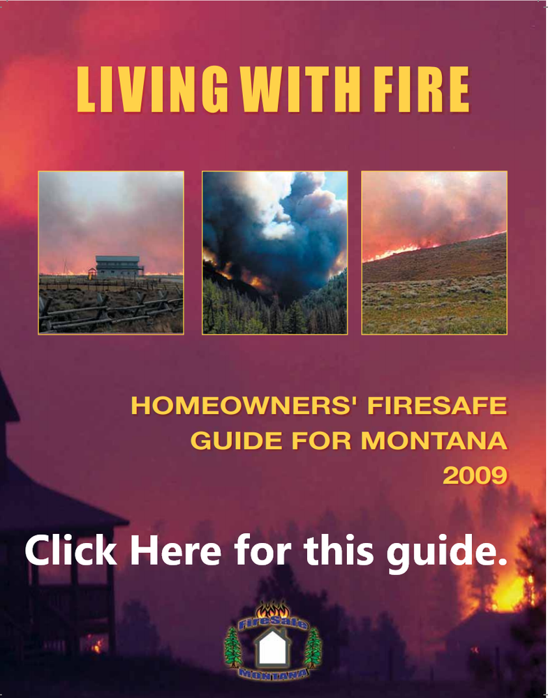 Living with Fire Pic