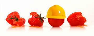 Safe Tomato picture
